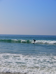 Surfs up! After many wipe outs, I finally got the hang of it on day 3.